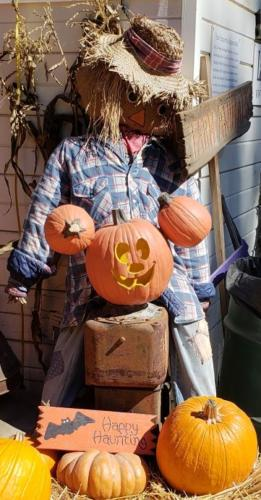 Scarecrows and Pumpkins!